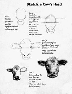 Drawn tongue cattle Face Art The of of