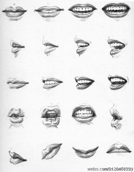 Drawn photos mouth Pin Sketch Find best Nose)