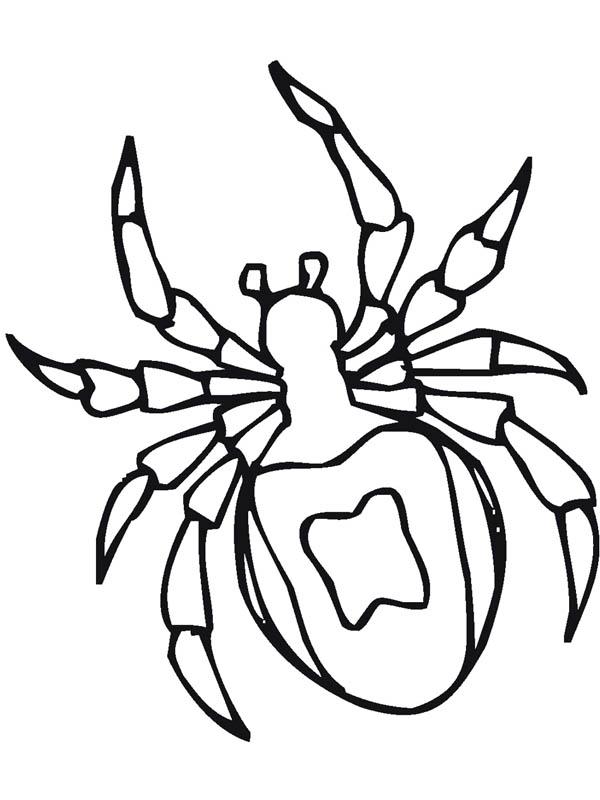 Drawn totem pole spider Coloring Coloring Page Tarantula Tarantula