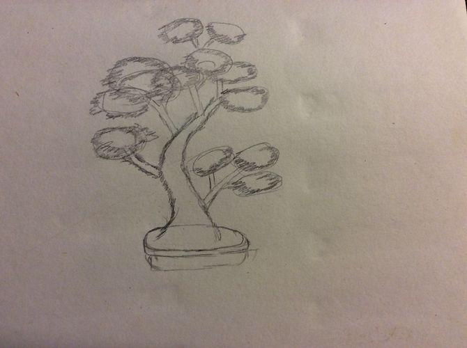 Drawn tree bonsai tree Ago Steps Pictures) year Draw