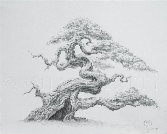 Drawn tree bonsai tree Hollow Tree Pinterest Art: >