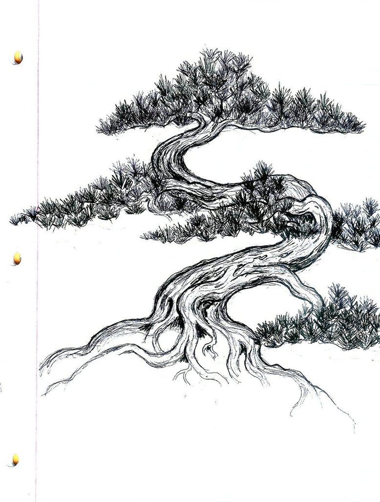 Drawn tree bonsai tree Google Tattoos Αναζήτηση LifeTree Pinterest