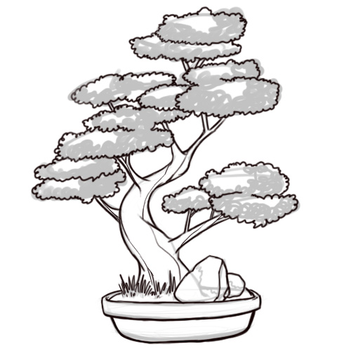 Drawn tree bonsai tree Step Tree: Pictures) Steps Outline