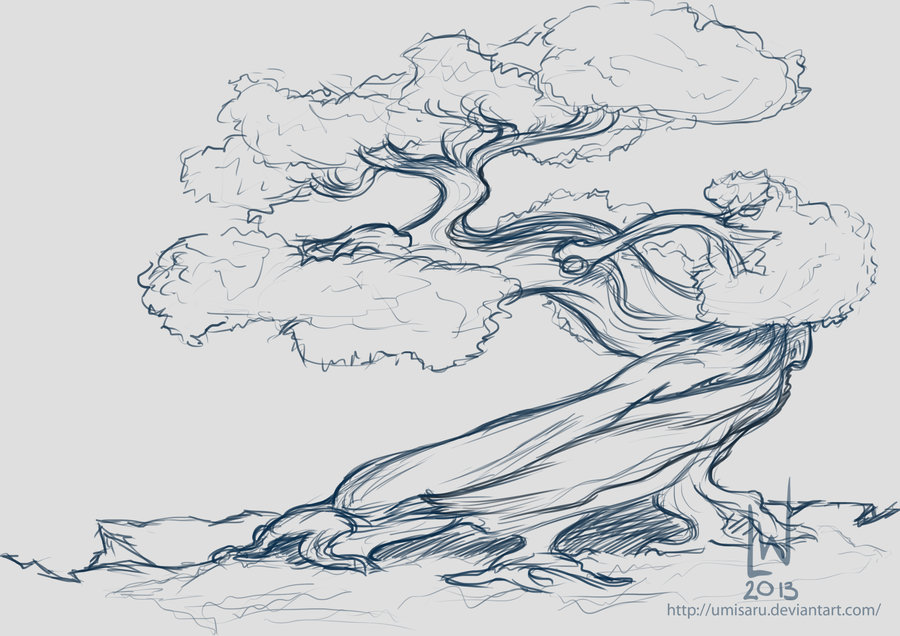 Drawn tree bonsai tree By Coloring Drawing And Bonsai
