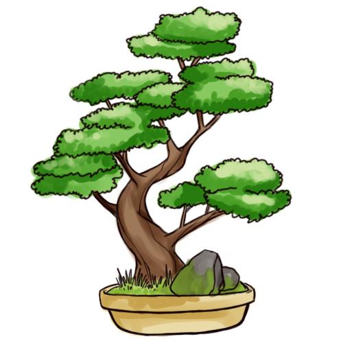 Drawn tree bonsai tree Intro Steps Pictures) Bonsai Draw