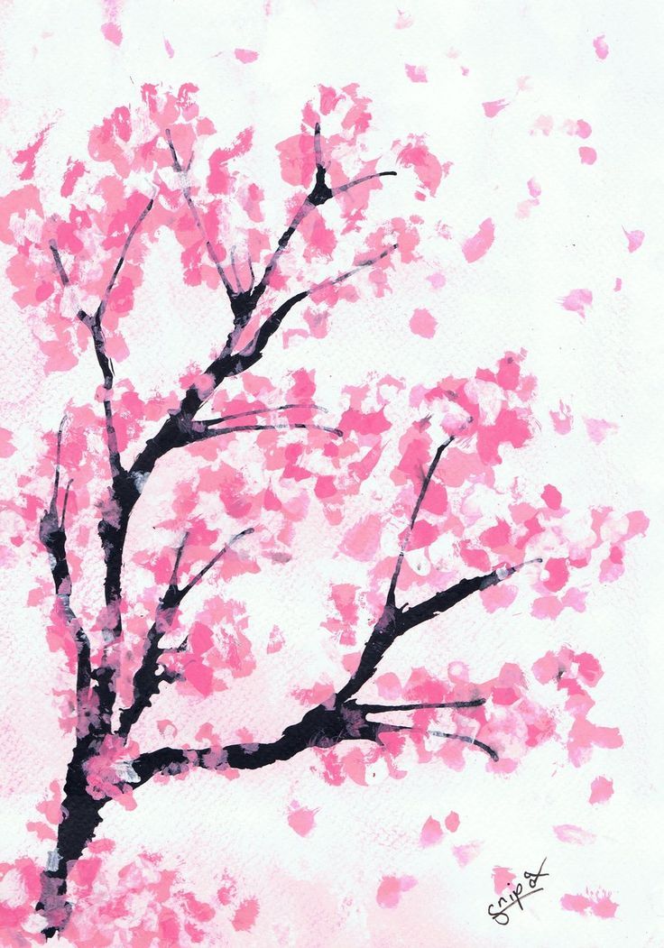 Drawn tree cherry blossom tree Blossom images on 13 drawing