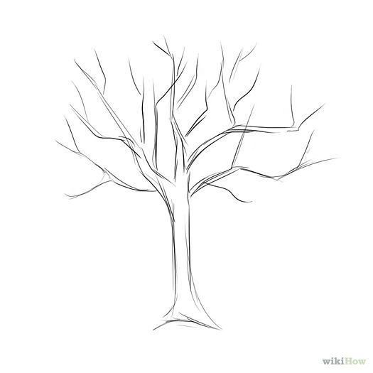 Drawn tree detailed And starter backround this and