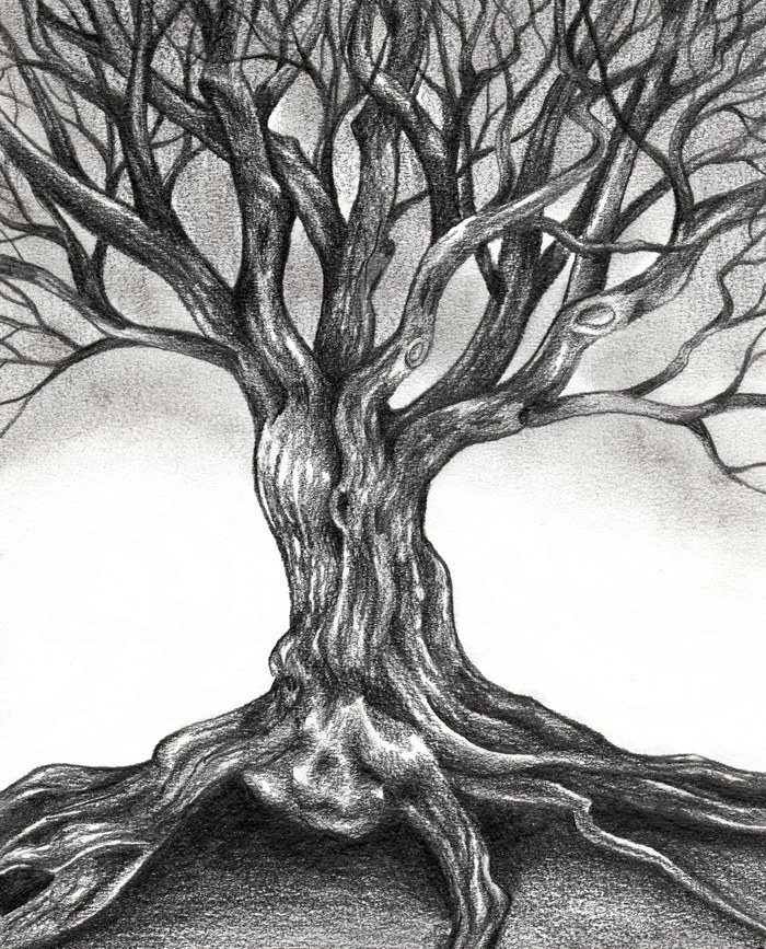 Drawn roots An indispensable skill are will