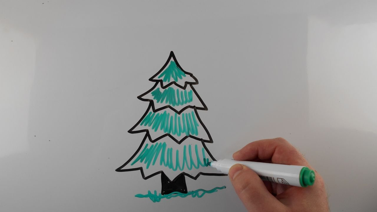 Drawn fir tree easy Kids Drawing How on Whiteboard