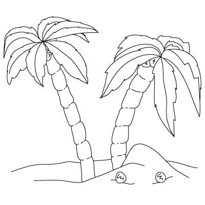 Drawn palm tree step by step #6