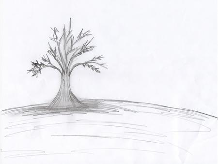 Drawn background desktop Tree Nature Drawn Tree &