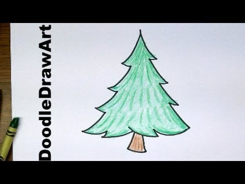 Drawn fir tree easy Easy To Drawing: Draw Pine