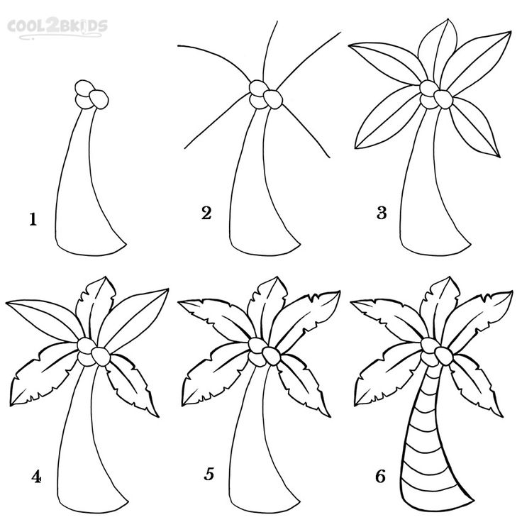 Drawn palm tree step by step #2