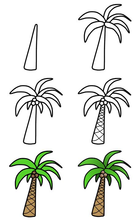 Drawn palm tree step by step #1