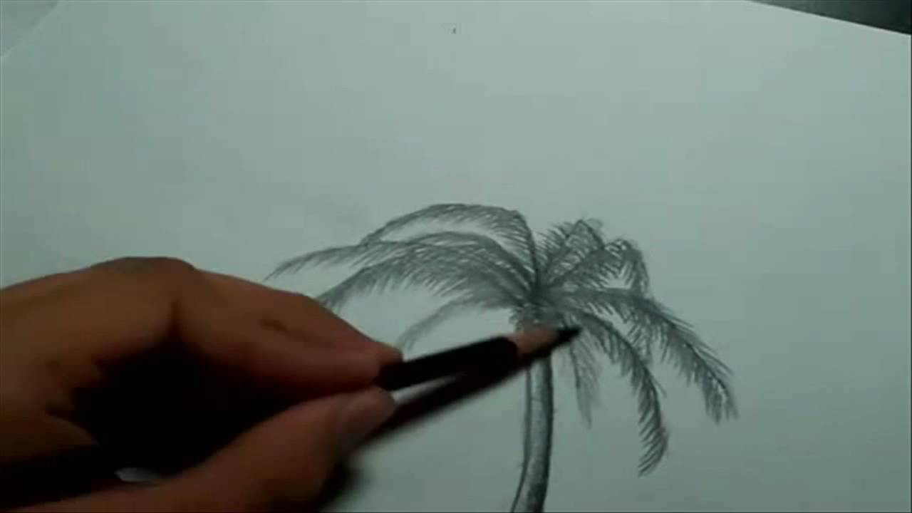 Drawn palm tree beachy YouTube A Landscape Draw How