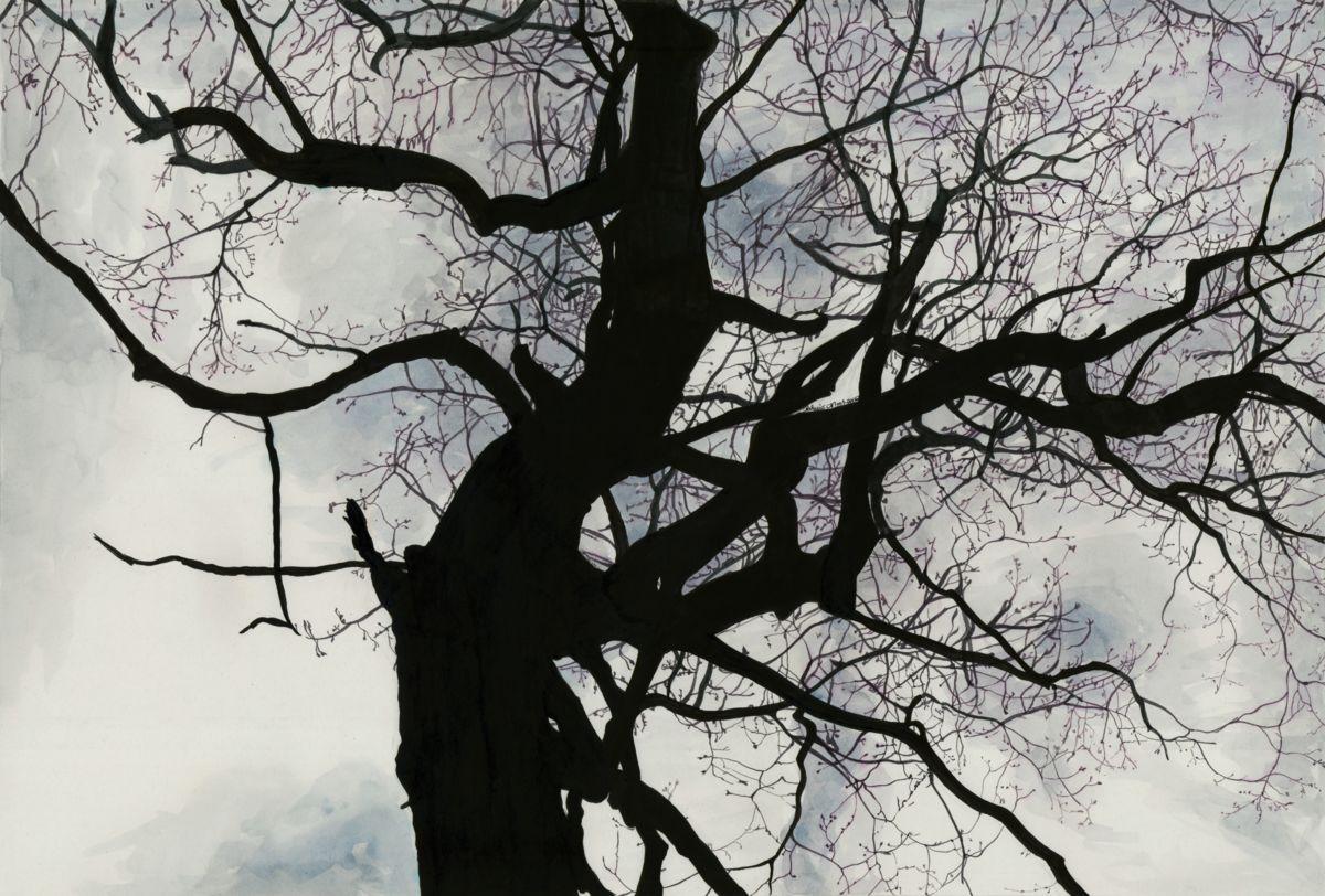 Drawn tree winter tree Drawing Palmić WINTER WINTER Nives