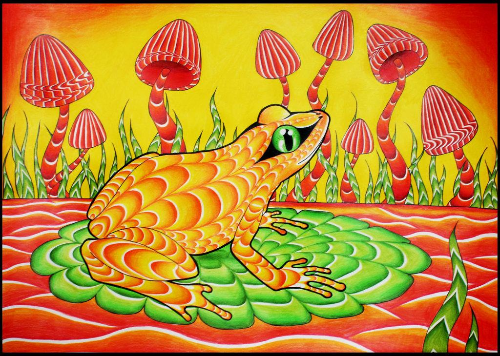 Drawn triipy frog Wallpaper shrooms Shroom Trippy by