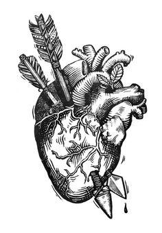 Drawn triipy heart Design  Free Anatomical Anatomical