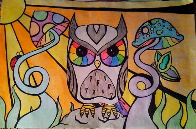 Drawn triipy owl By Owl DeviantArt Owl xninja