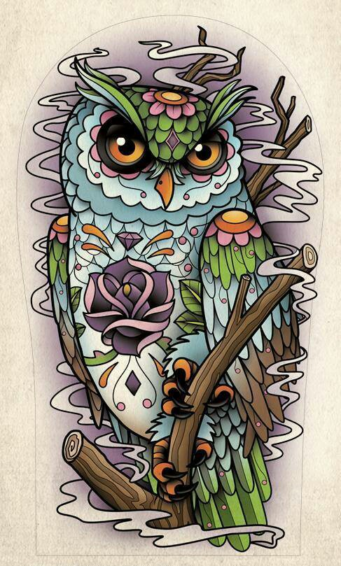 Drawn triipy owl  the and about Owl