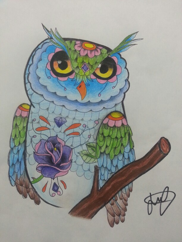 Drawn triipy owl Own My  owl drawings/crafts