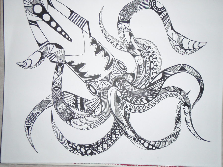 Drawn triipy squid Search and squid  Drawings