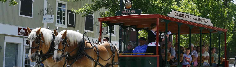 Drawn trolley Horse Tours Orange – Tours