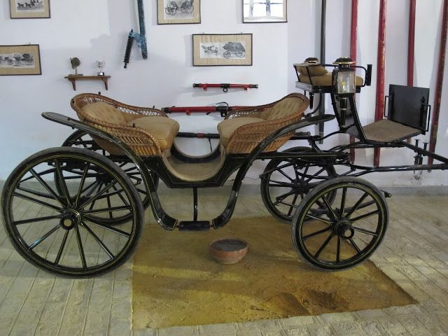 Drawn trolley friesian horse Vis Canastilla vis Vehicles best
