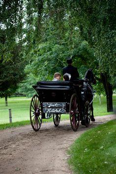 Drawn trolley friesian horse Horse vis bride Black vis