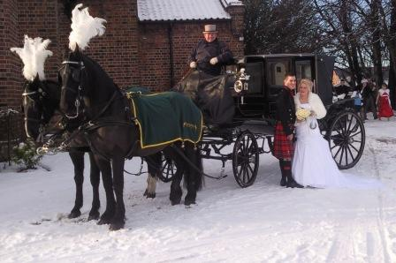 Drawn trolley friesian stallion At Anvil_Snow1 Green Carriages Gretna