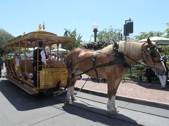 Drawn trolley gold horse Here's Horse Trolley: 2005 a