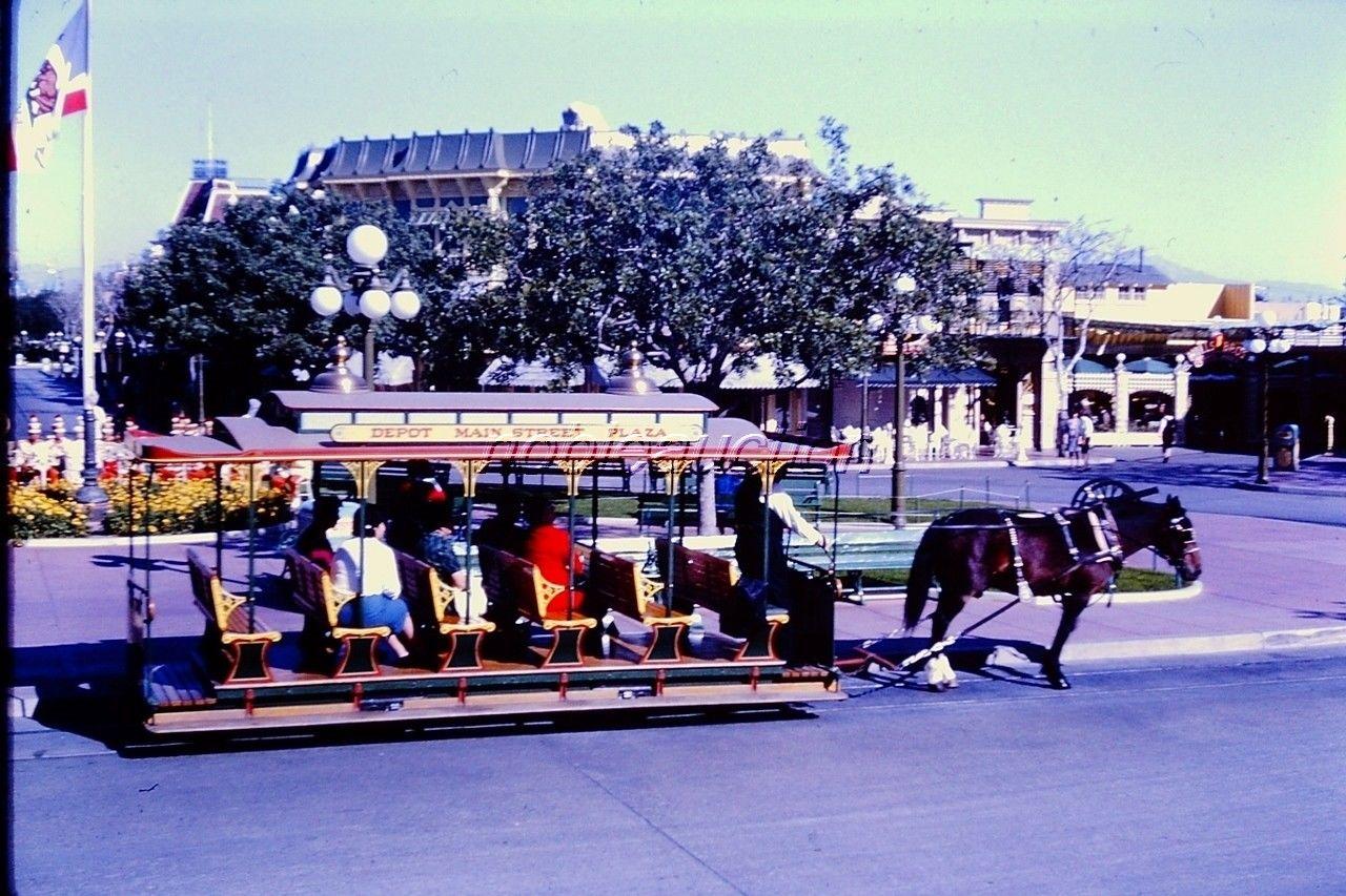Drawn trolley purple horse Street Horse Depot What's Disneyland
