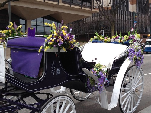 Drawn trolley purple horse Horse Carriage Drawn Carriage Carriage