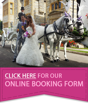 Drawn trolley unicorn Services Occasions Occasions CARRIAGES and