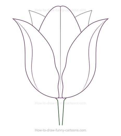 Drawn tulip Drawing drawing How Create Tulip