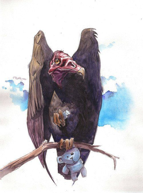 Drawn turkey vulture #12