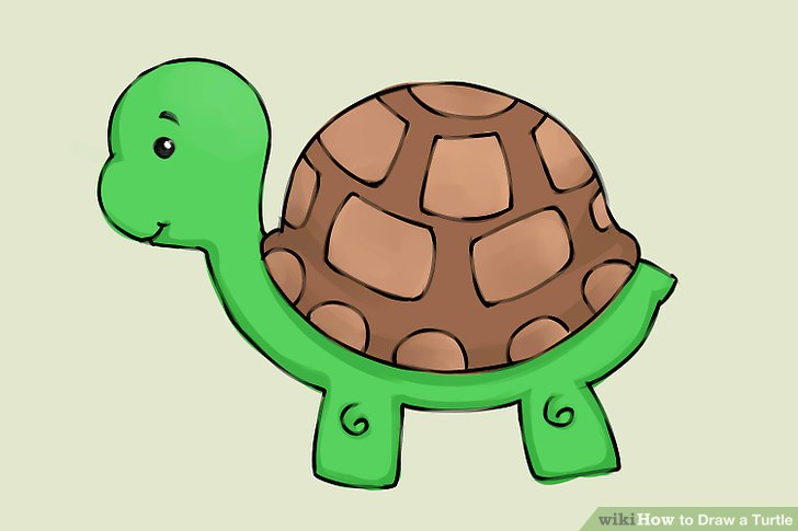 Drawn turtle Titled a Draw Turtle 9