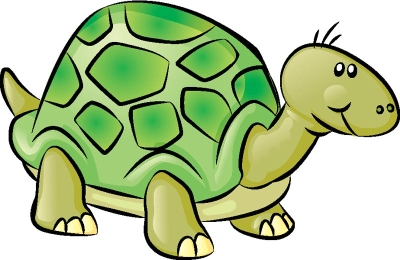 Drawn turtle Image Learn a Turtle Gallery