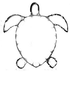 Drawn sea turtle pattern Pages  my turtle Turtle