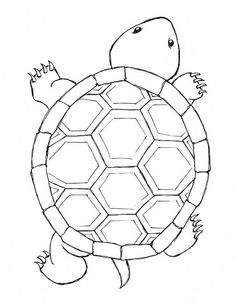 Drawn sea turtle pattern Printable use plate all the