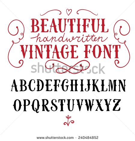 Drawn typeface abc letter different Nice vector drawn vintage design