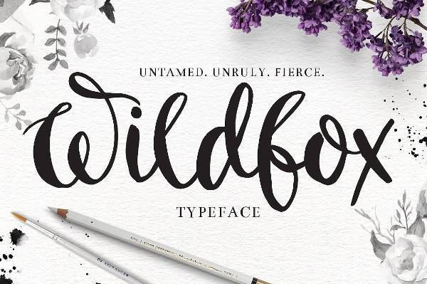 Drawn typeface fancy Hand OTF 10+ Format