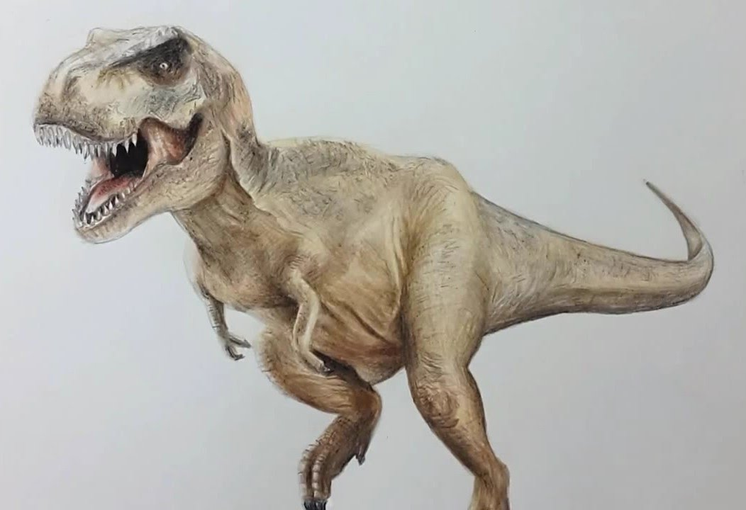 Drawn tyrannosaurus rex REX TIRANOSAURIO TIRANOSAURIO I YouTube