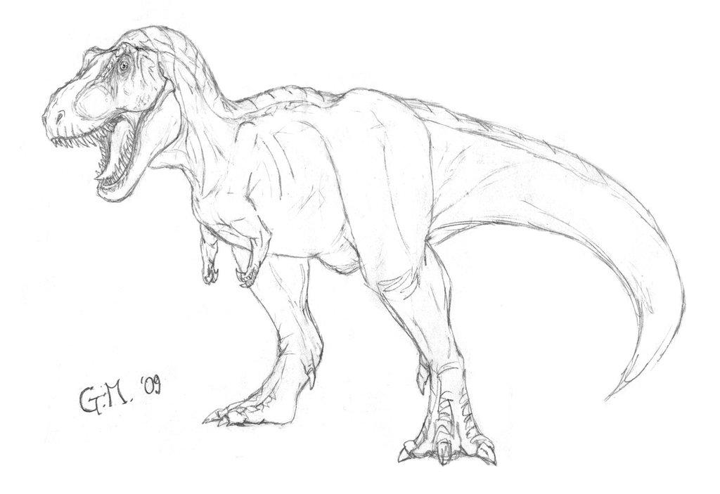 Drawn tyrannosaurus rex T by Rex Joe DeviantArt