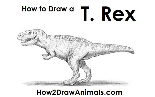 Drawn tyrannosaurus rex Rex Tyrannosaurus Tyrannosaurus to (T