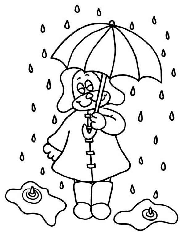 Drawn umbrella raindrop Puppy Luna Color Umbrella Raindrop