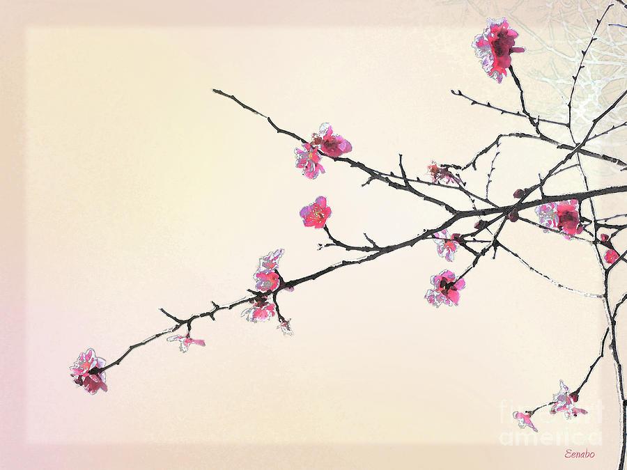 Drawn ume blossom Eena Photograph Plum Bo Photograph