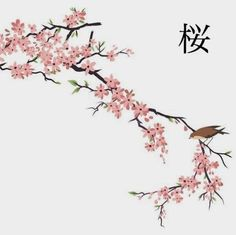 Drawn ume blossom Cherry cherry Japanese called Drawing
