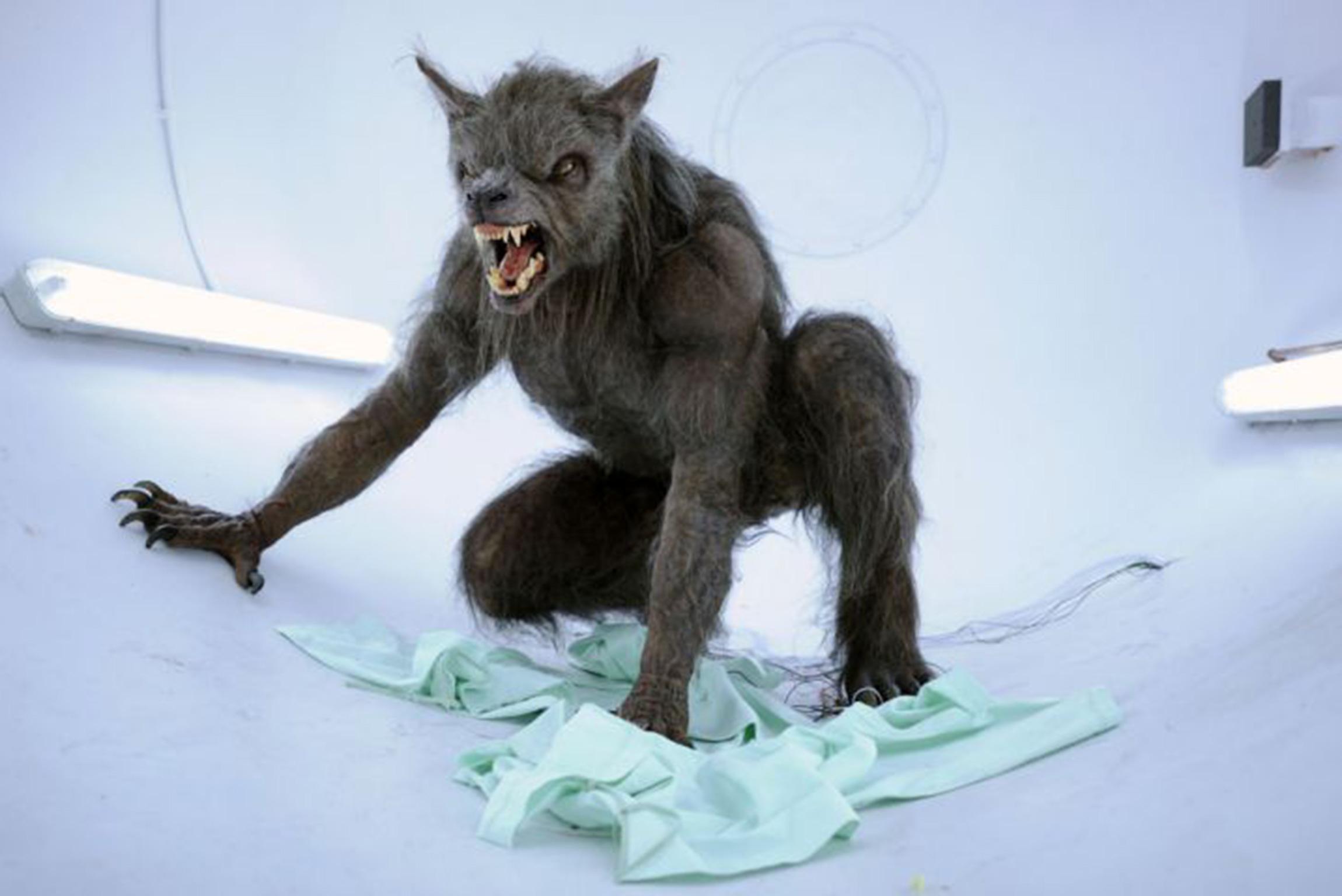 Drawn wolfman irish A see Werewolf conference