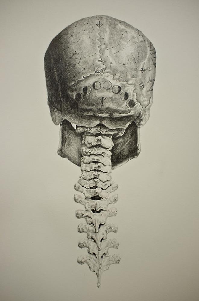 Drawn vans skeleton By a twist by van